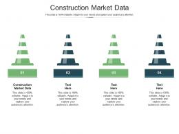 Construction Market Data Ppt Powerpoint Presentation Infographics Cpb