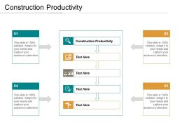 Construction Productivity Ppt Powerpoint Presentation Infographics Layouts Cpb