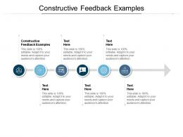 Constructive Feedback Examples Ppt Powerpoint Presentation Show Example Cpb