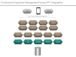 constructive_programmer_management_process_ppt_infographics_Slide01
