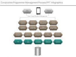 Constructive Programmer Management Process Ppt Infographics