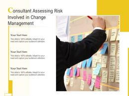 Consultant Assessing Risk Involved In Change Management