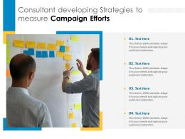 Consultant Developing Strategies To Measure Campaign Efforts