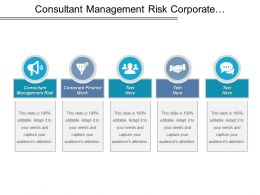Consultant Management Risk Corporate Finance Work Corporate Financing Service Cpb