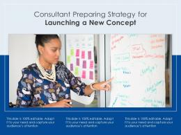 Consultant Preparing Strategy For Launching A New Concept