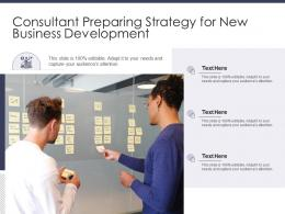 Consultant Preparing Strategy For New Business Development