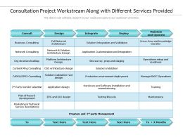 Consultation Project Workstream Along With Different Services Provided