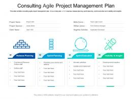 Consulting Agile Project Management Plan