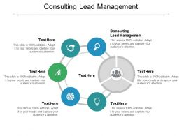 Consulting Lead Management Ppt Powerpoint Presentation Infographic Template Graphics Cpb
