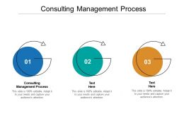 Consulting Management Process Ppt Powerpoint Presentation File Gridlines Cpb
