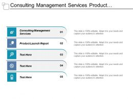 Consulting Management Services Product Launch Report Data Strategies Cpb