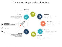 Consulting Organization Structure Ppt Powerpoint Presentation Infographics Icon Cpb