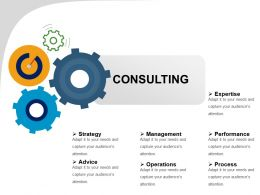 Consulting Ppt Presentation Examples