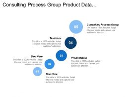 Consulting Process Group Product Data Management Gifts Efficiency Reports