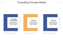 Consulting Process Model Ppt Powerpoint Presentation Professional Clipart Cpb