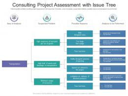 Consulting Project Assessment With Issue Tree