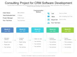 Consulting Project For CRM Software Development