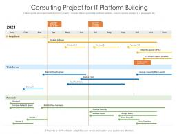 Consulting Project For IT Platform Building