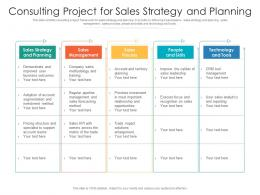 Consulting Project For Sales Strategy And Planning