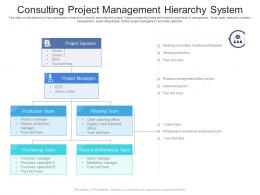 Consulting Project Management Hierarchy System