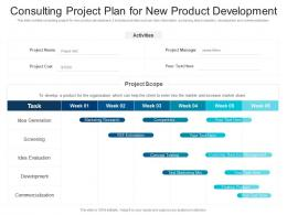 Consulting Project Plan For New Product Development