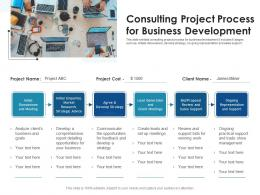 Consulting Project Process For Business Development
