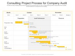 Consulting Project Process For Company Audit