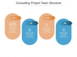 Consulting Project Team Structure Ppt Powerpoint Presentation Icon Example Cpb