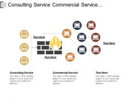 Consulting Service Commercial Service Implementation Phase Validation Phase