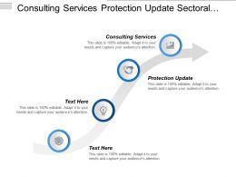 Consulting Services Protection Update Sectoral Innovation Procurement Strategy