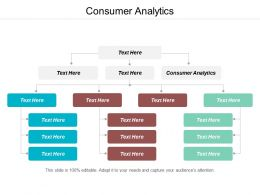 Consumer Analytics Ppt Powerpoint Presentation Pictures Microsoft Cpb