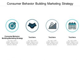 Consumer Behavior Building Marketing Strategy Ppt Powerpoint Gallery Images Cpb