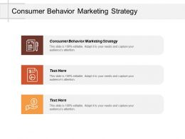 Consumer Behavior Marketing Strategy Ppt Powerpoint Presentation Model Infographic Template Cpb