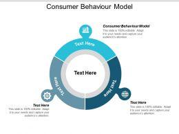 Consumer Behaviour Model Ppt Powerpoint Presentation Ideas Visual Aids Cpb