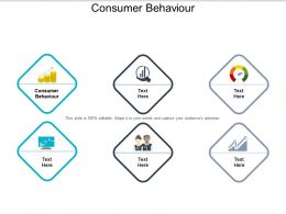Consumer Behaviour Ppt Powerpoint Presentation File Templates Cpb