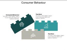 Consumer Behaviour Ppt Powerpoint Presentation Ideas Design Inspiration Cpb