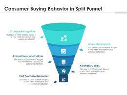 Consumer Buying Behavior In Split Funnel