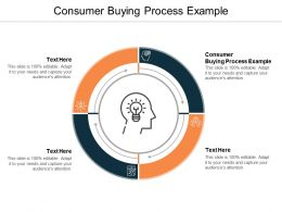 Consumer Buying Process Example Ppt Powerpoint Presentation Slides Examples Cpb