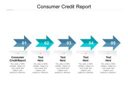 Consumer Credit Report Ppt Powerpoint Presentation Model Graphics Pictures Cpb