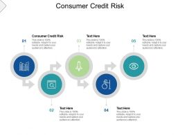 Consumer Credit Risk Ppt Powerpoint Presentation Ideas Design Ideas Cpb