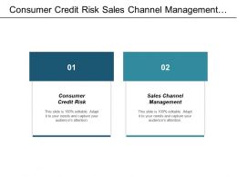 Consumer Credit Risk Sales Channel Management Personal Organization Cpb