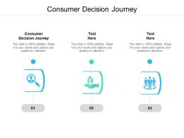 Consumer Decision Journey Ppt Powerpoint Presentation Infographic Template Ideas Cpb