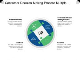 Consumer Decision Making Process Multiple Branding Engagement Life Cycle Cpb