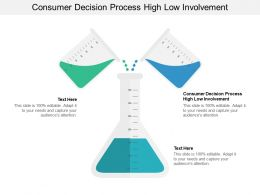 Consumer Decision Process High Low Involvement Ppt Powerpoint Presentation Summary Smartart Cpb