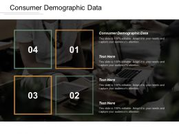 Consumer Demographic Data Ppt Powerpoint Presentation Gallery Graphics Cpb