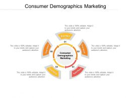 Consumer Demographics Marketing Ppt Powerpoint Presentation Icon Graphics Download Cpb