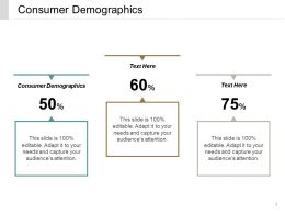 Consumer Demographics Ppt Powerpoint Presentation File Influencers Cpb