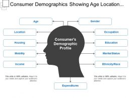 Consumer Demographics Showing Age Location Occupation Gender