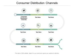 Consumer Distribution Channels Ppt Powerpoint Presentation Outline Graphics Pictures Cpb