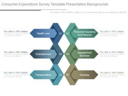 Consumer Expenditure Survey Template Presentation Backgrounds